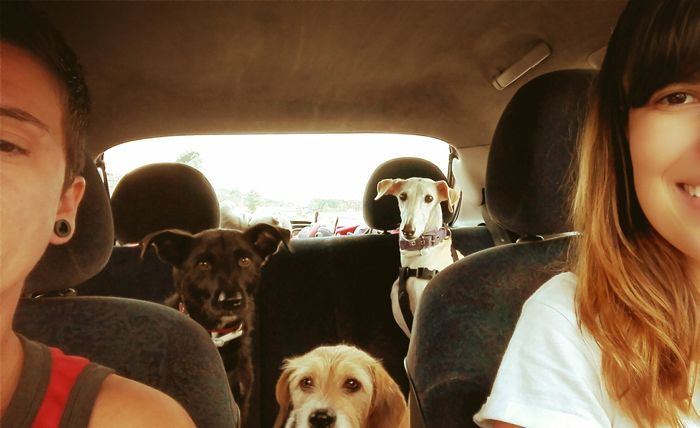 veronicas_viajar_baracelona_perro